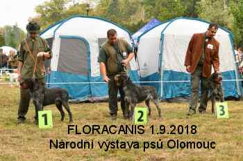 fotogal nv floracanis2018